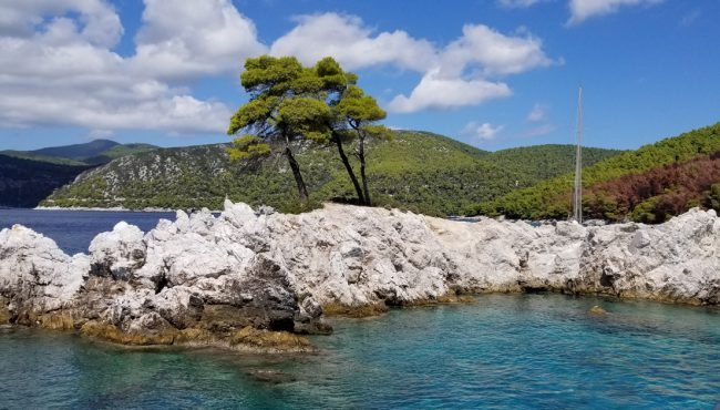 """Cape Amarantos has two pine trees on the limestone rock near Agnontas Beach. Sophie and her dads shot a scene under the trees during the song """"Our Last Summer."""" The harbor of Agnontas was also the location for filming a portion of """"Money, Money, Money."""""""