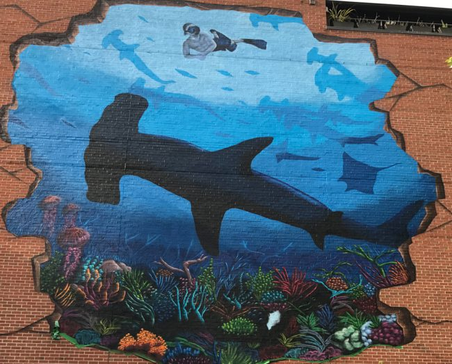 Murals around the world in Australia, Toronto, New Zealand and Florida have been unveiled in Rob's honor by Ocean conservation foundation PangeaSeed and there are more in the works.