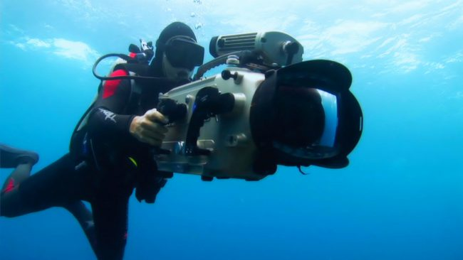 When his magazine article and photos about longlining garnered little action, Rob discovered a high definition video camera and during a voyage with Sea Shepherd Conservation Society, an organization that had the same concerns about sharks and other marine animals that Rob had, he found his calling.