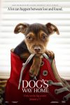 New movies in theaters - A Dog's Way Home and more