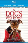 New on DVD - A Dog's Way Home, Holmes & Watson and more!