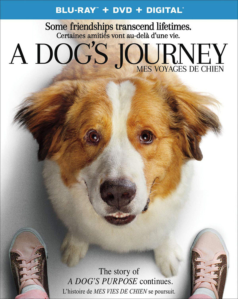 A Dog's Journey Blu-ray and DVD