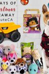 12 Days of Christmas Giveaway: Day 11 - For the kids and dog