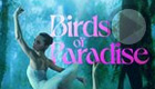 Birds of Paradise (Amazon Prime Video)