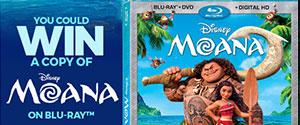 Moana DVD Contest