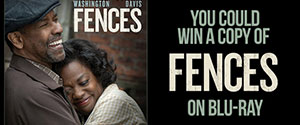 Fences Contest