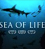 Sea of Life inspired by Rob Stewart's Revolution