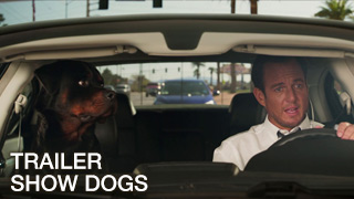 Trailer: RShow Dogs