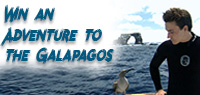 Last chance at an adventure trip to the Galapagos Islands with Sharkwater Extinction & G Adventures