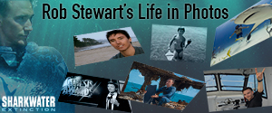 Rob Stewart's Life in Photos