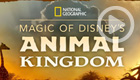 Magic of Disney's Animal Kingdom (Disney+)