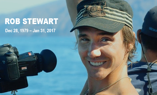 In-Memory-of-Rob-Stewart1.jpg