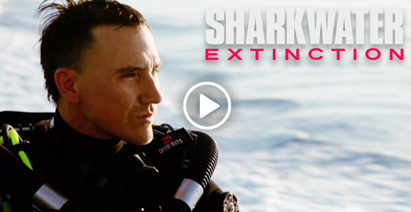 Rob Stewart Sharkwater: Extinction