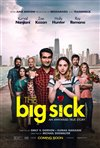 The Big Sick movie poster