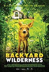 Backyard Wilderness: An IMAX 3D Experience