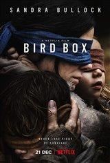 Bird Box (Netflix)