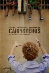 Carpinteros (Woodpeckers)
