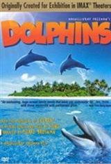Dolphins (2000)