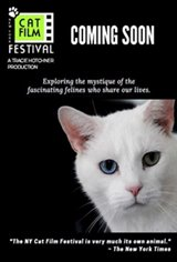 NY Cat Film Festival Program 1