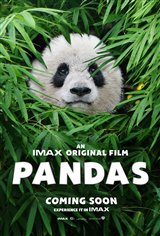 Pandas: The IMAX Experience