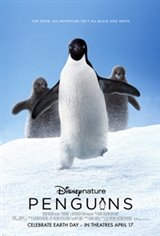 Penguins: The IMAX Experience