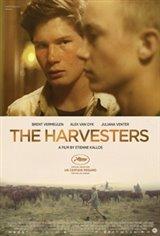 The Harvesters (Die Stropers)
