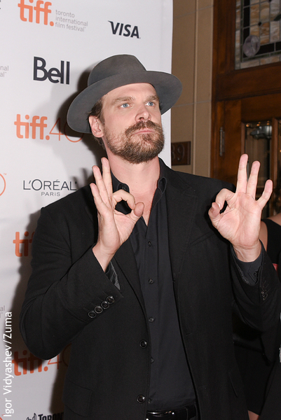 david harbour imdbdavid harbour speech, david harbour photoshoot, david harbour actor, david harbour eleven, david harbour winona ryder, david harbour sag awards, david harbour filmography, david harbour funny, david harbour stranger things, david harbour kate winslet, david harbour height weight, david harbour quote, david harbour roles, david harbour imdb, david harbour golden globes, david harbour wdw, david harbour instagram, david harbour tumblr, david harbour height, david harbour michael c hall