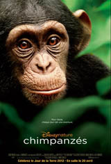Chimpanzés Movie Poster