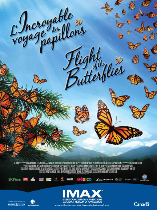 Flight of the Butterflies Large Poster