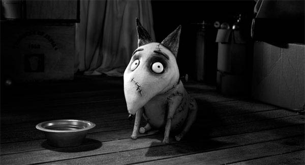 Frankenweenie photo 12 of 28