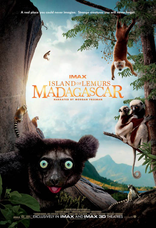 Island of Lemurs: Madagascar Large Poster