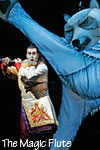 The Metropolitan Opera: The Magic Flute