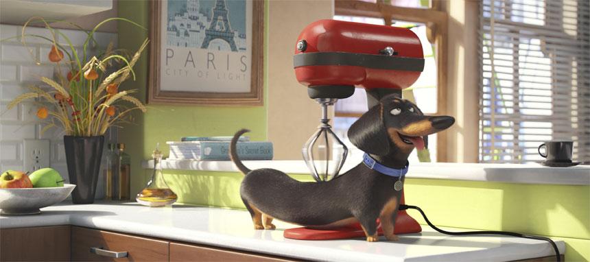 The secret life of pets edmonton movies