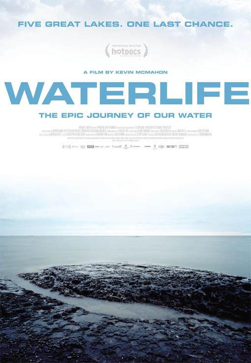 Waterlife Large Poster