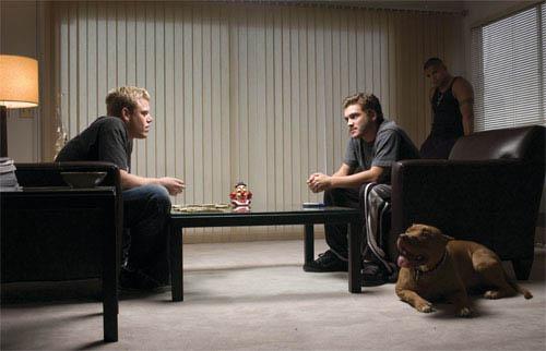 Alpha Dog Photo 9 - Large