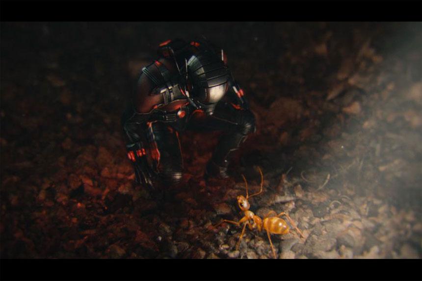 Ant-Man Photo 17 - Large