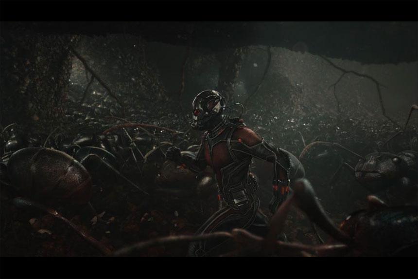 Ant-Man Photo 19 - Large