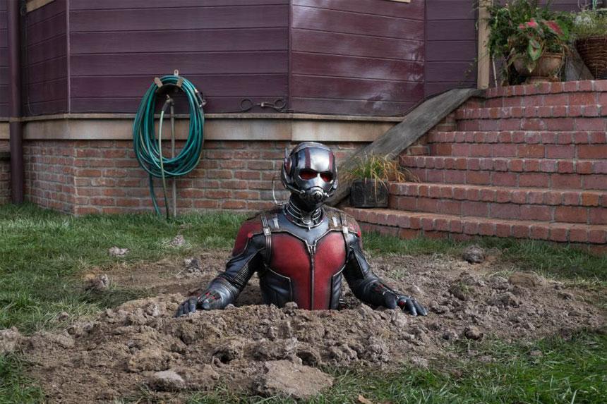 Ant-Man Photo 23 - Large