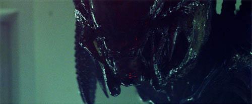Aliens vs. Predator: Requiem Photo 1 - Large