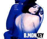 B. Monkey Photo 2 - Large