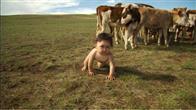 Babies Photo 8