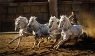 Ben-Hur Photo 1