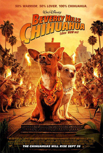 Beverly Hills Chihuahua Photo 1 - Large