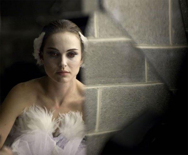 Black Swan Photo 8 - Large