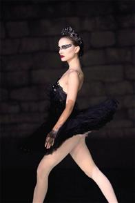Black Swan Photo 10