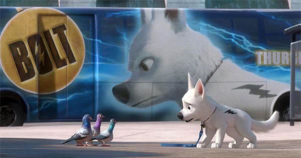 Bolt Photo 5 - Large