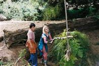 Bridge to Terabithia Photo 5