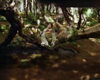 Bridge to Terabithia Photo 19
