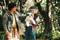 Bridge to Terabithia Photo 4