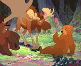 Brother Bear Photo 8 - Large